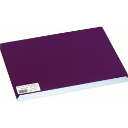 Set de table papier Aubergine 30x40