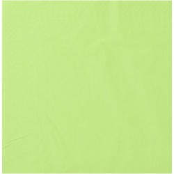 Serviettes Ouate pistache 20x20 2 plis