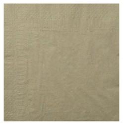 Serviettes Ouate argile 20x20 2 plis